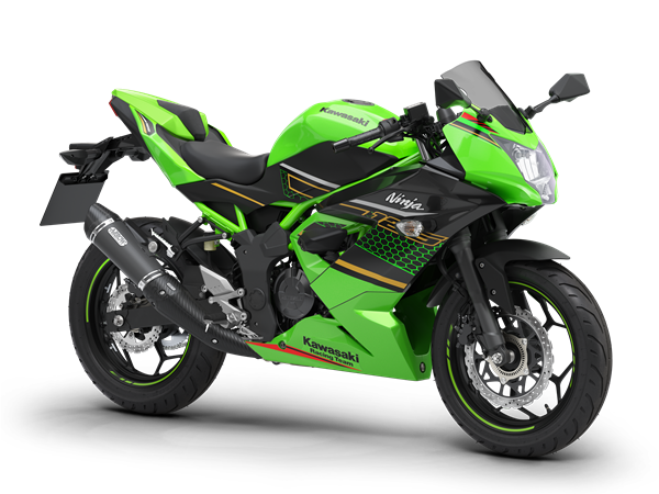 /fileuploads/Marcas/Kawasaki/Motos/Supersport/_Benimoto-Kawasaki-Ninja-125-Performance-verde.png